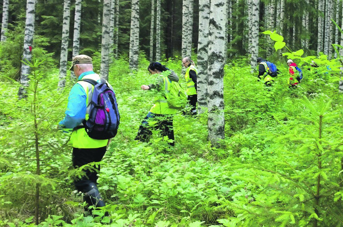 Auttamisen halu vetää etsijän metsään