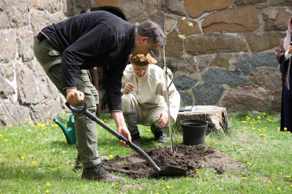 Omenapuut jäivät muistoksi reformaation juhlavuodesta
