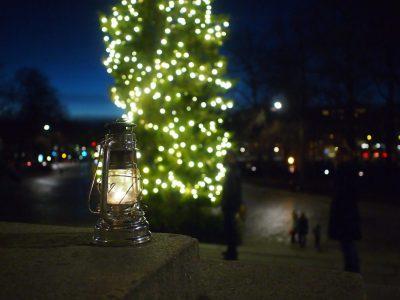 Kapunki pimenevässä illassa, taustalla valaistu joulukuusi ja etualalla myrskylyhty, jossa palaa Betlehemistä tuotu tuli.