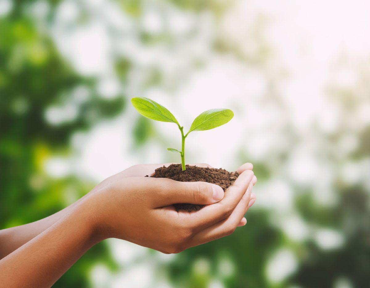 Ympäristökasvatus vahvistaa rippikoululaisten luontosuhdetta